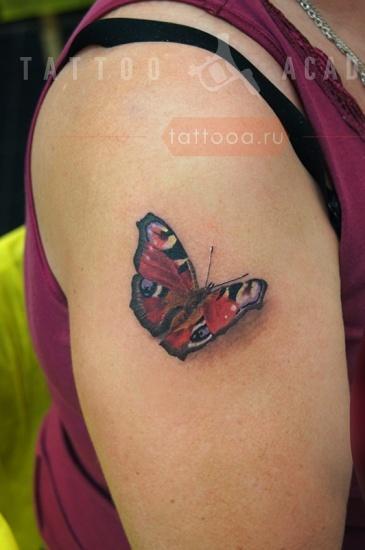 интимная татуировка бабочка-бт1