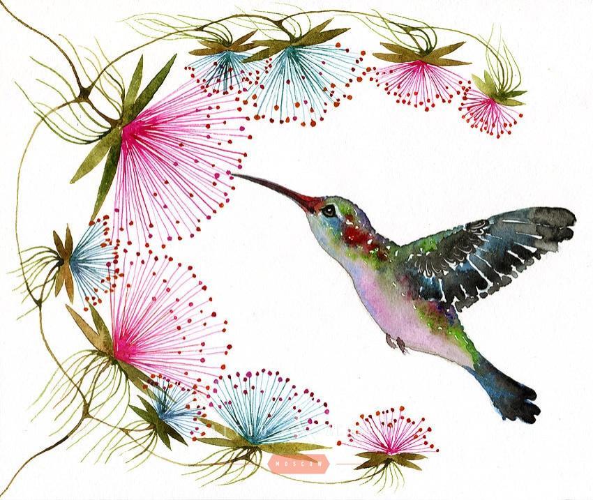 эскизы красивых птиц с цветами рекомендуется